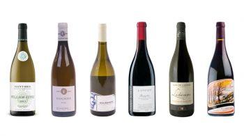 Cours d'oenologie à domicile avec Vinextenso - Wine box Niveau 1